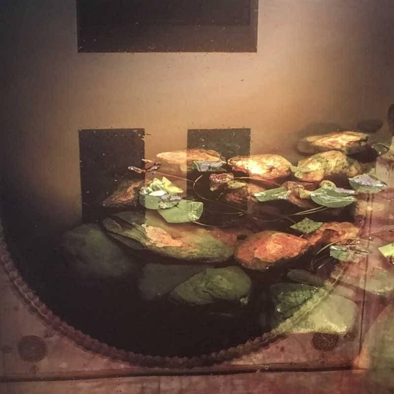El agua, alma de Granada