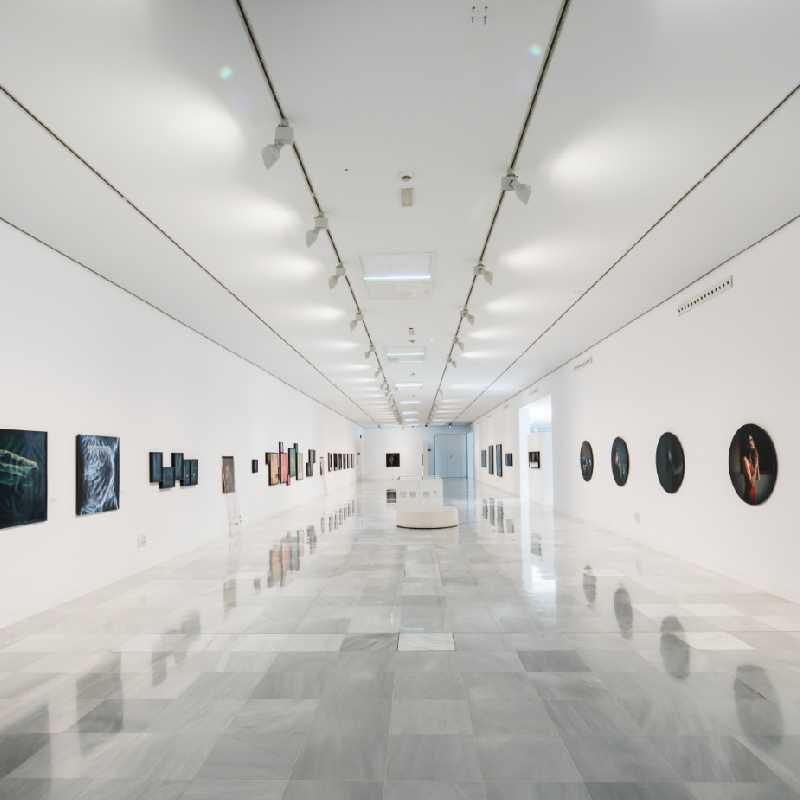 Sala diáfana con cuadros expuestos