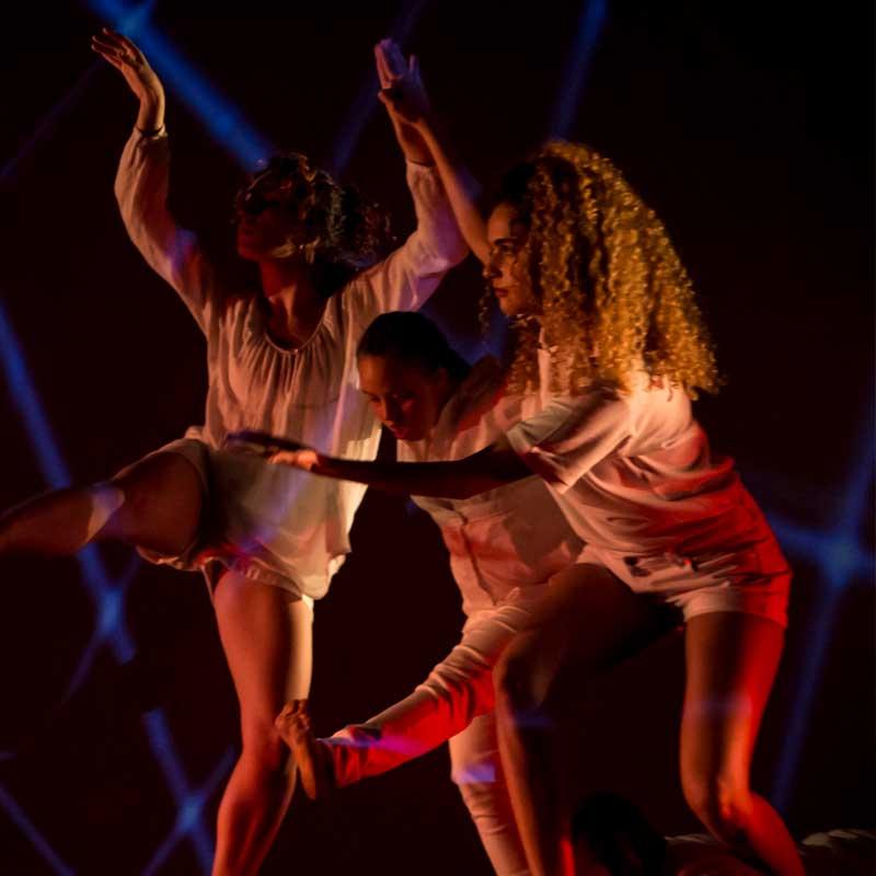 Triple espectáculo inclusivo de la Cía. de danza «Vinculados»