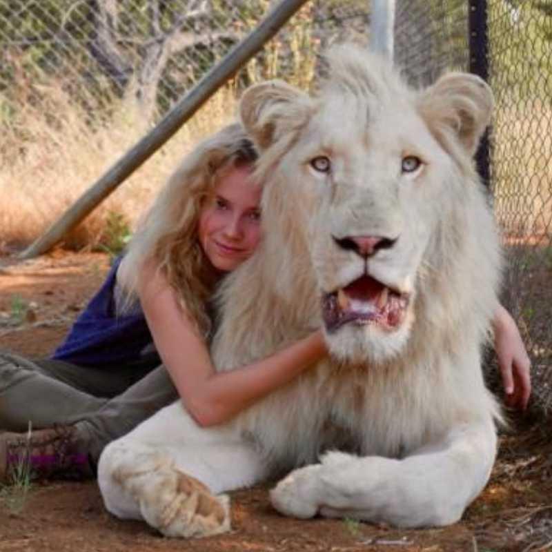 Fotograma de la película 'Mia y el león blanco'