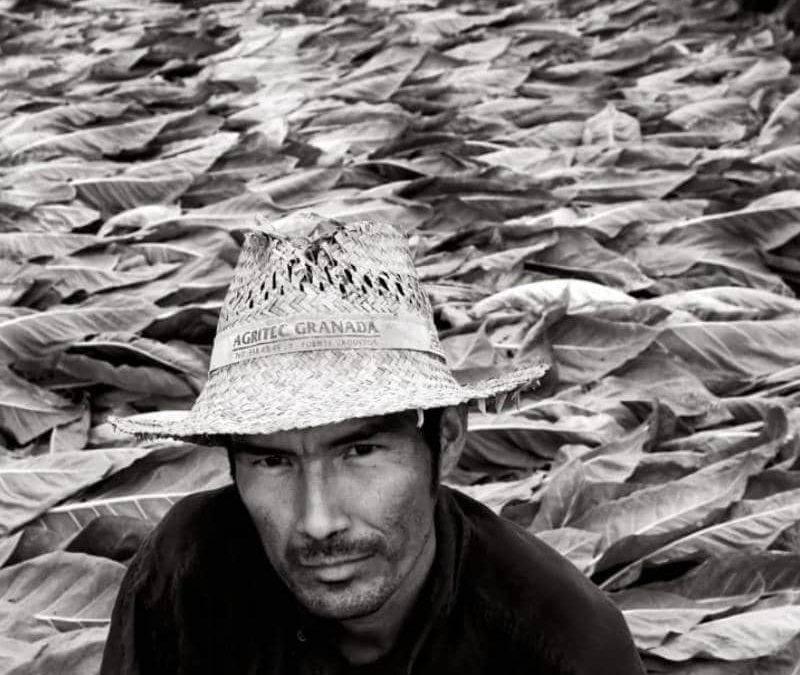 Imagen de un agricultor